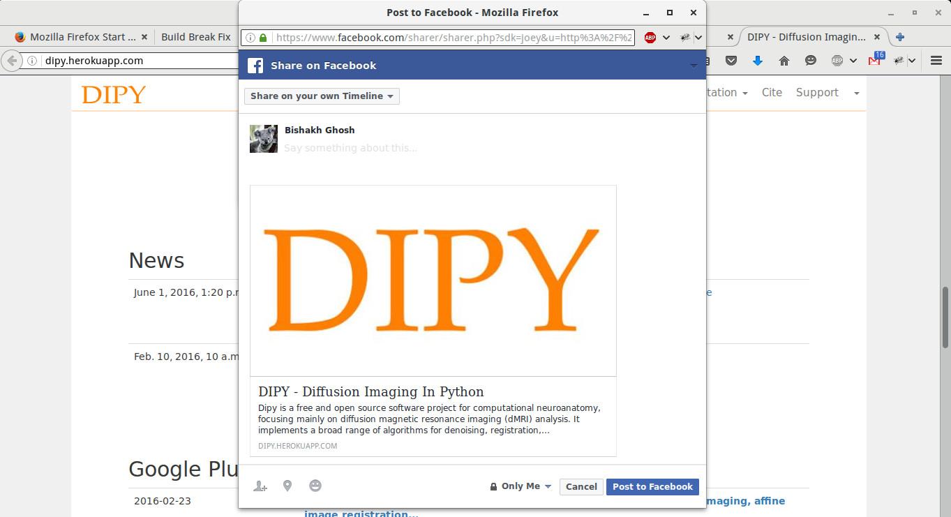dipy SEO share page screenshot